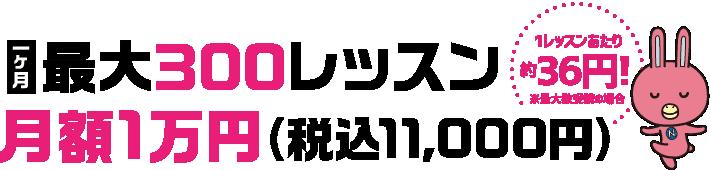 1ヶ月最大300レッスン月額1万円(税込11,000円)